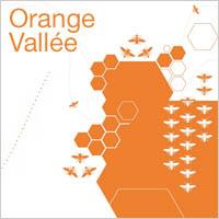 marketing-innovation-orange_vallee